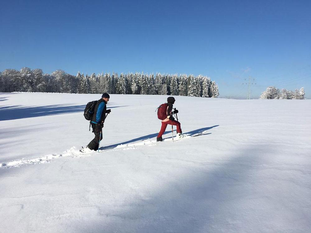 Skitour   bienen-freunde
